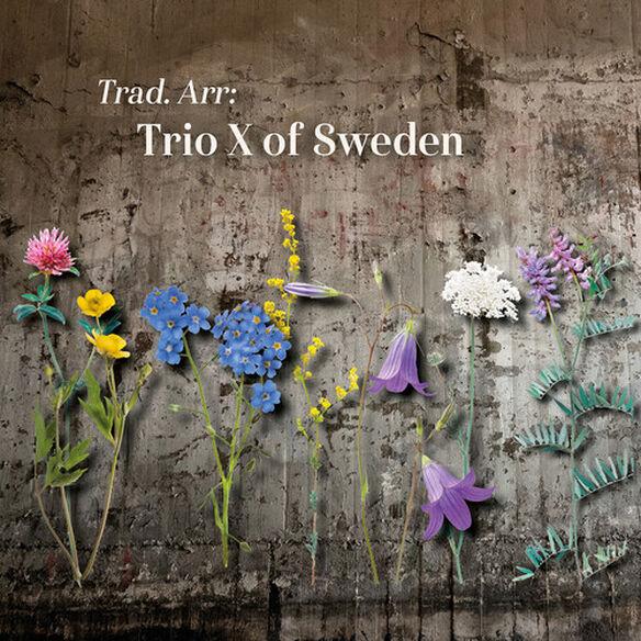 Various Artists - Trad Arr