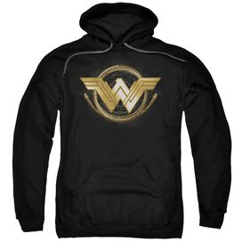 Wonder Woman Movie Lasso Logo Adult Pull Over Hoodie