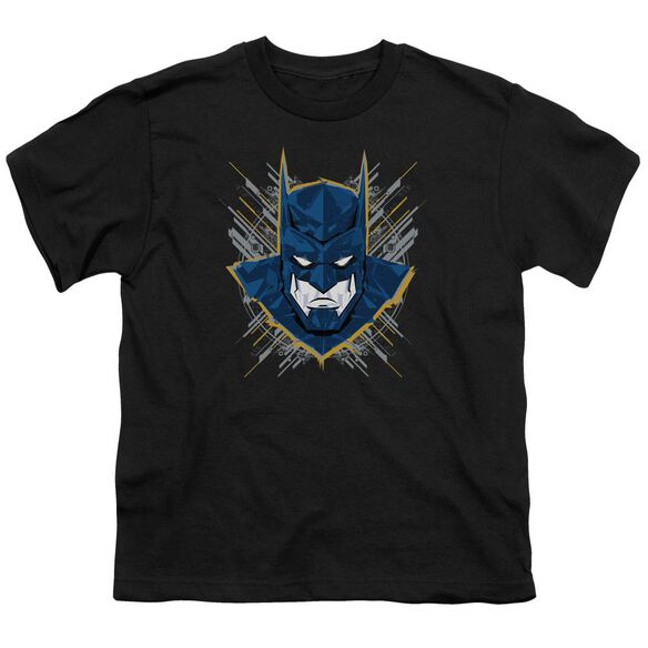 Batman Unlimited Bat Stare Short Sleeve Youth T-Shirt