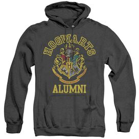 Harry Potter Hogwarts Alumni-adult
