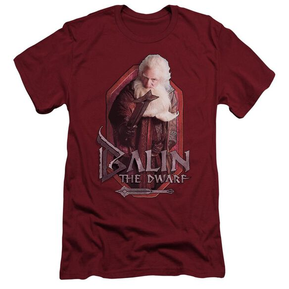The Hobbit Balin Short Sleeve Adult T-Shirt
