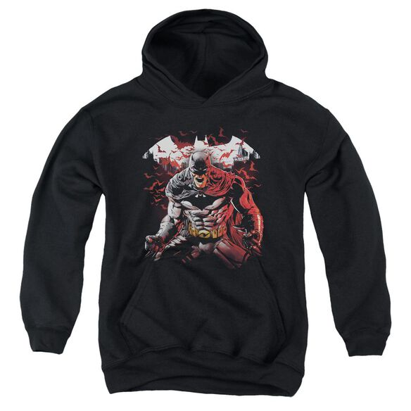 Batman Raging Bat Youth Pull Over Hoodie