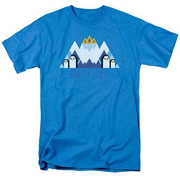 Adventure Time Ice King Geo Short Sleeve Adult Turquoise T-Shirt