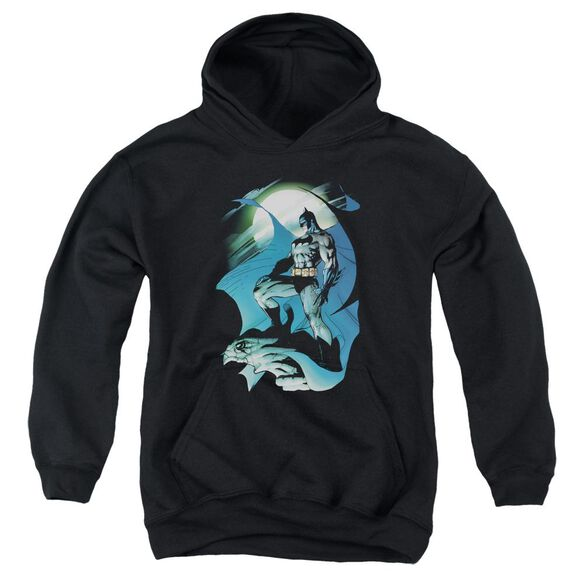 Batman Glow Of The Moon Youth Pull Over Hoodie