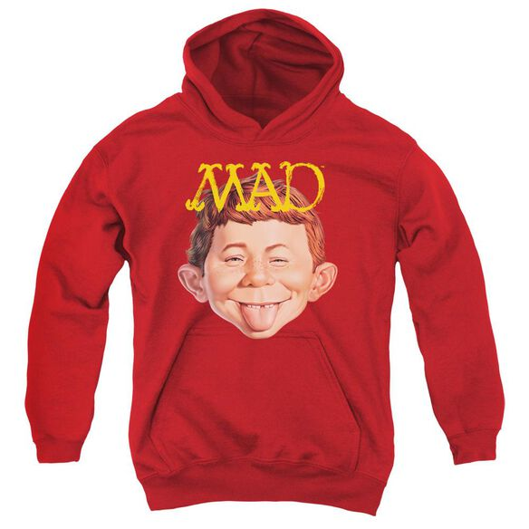 Mad Absolutely Mad Youth Pull Over Hoodie