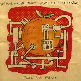 Peter Evans - Electric Fruit