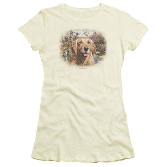 Wildlife Golden Retriever Head Short Sleeve Junior Sheer T-Shirt
