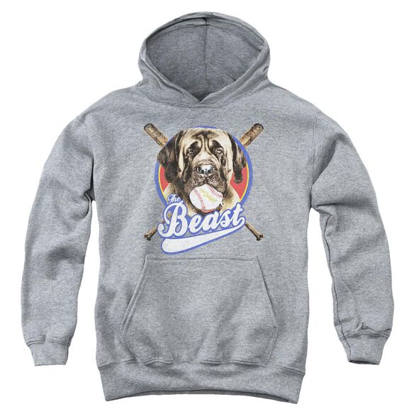 Sandlot The Beast Youth Pull Over Hoodie Athletic