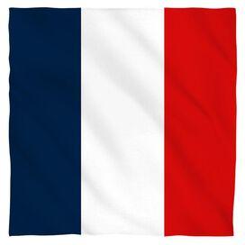 French Flag Bandana