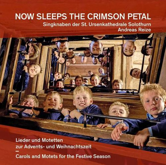 Now Sleeps The Crimson Petal
