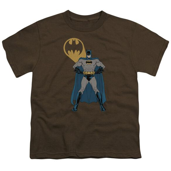 Batman Arms Akimbo Bats Short Sleeve Youth T-Shirt