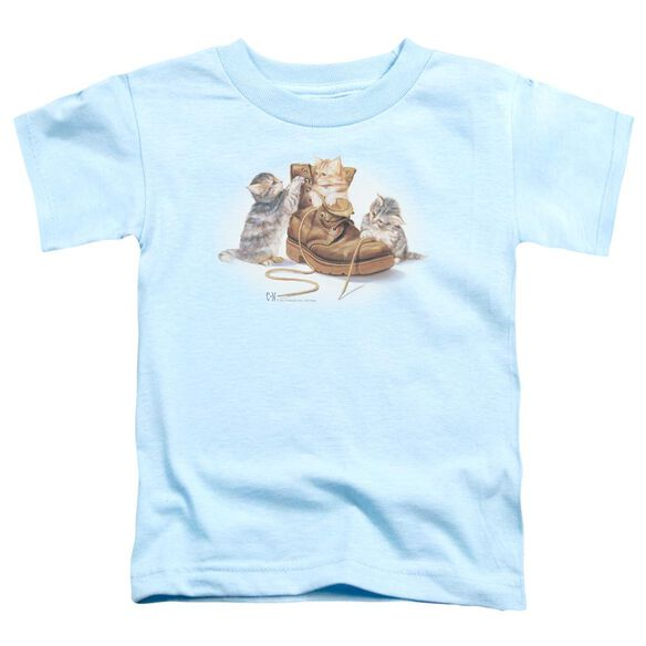 Wildlife Playful Kittens Short Sleeve Toddler Tee Light Blue T-Shirt