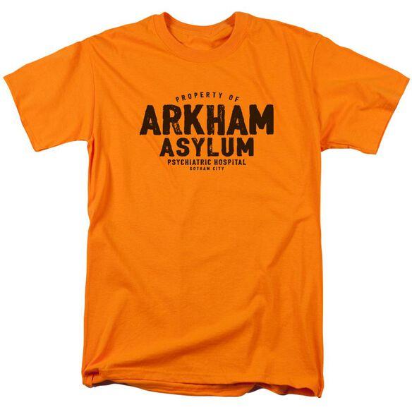 Batman Arkham Asylum Short Sleeve Adult T-Shirt