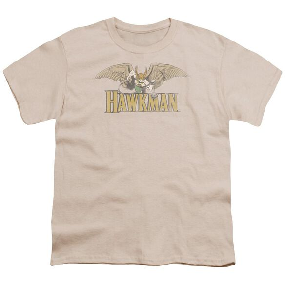 Dc Hawkman Short Sleeve Youth T-Shirt