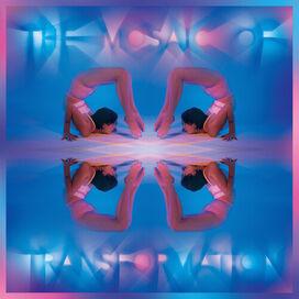 Kaitlyn Aurelia Smith - Mosaic Of Transformation (Clear Vinyl)