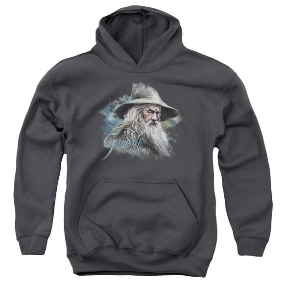 The Hobbit Gandalf The Grey Youth Pull Over Hoodie