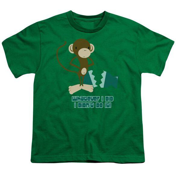 I Didn't Do It! Short Sleeve Youth Kelly T-Shirt
