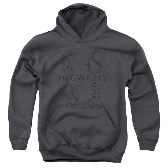 Harry Potter Literary Crests Youth Pull Over Hoodie