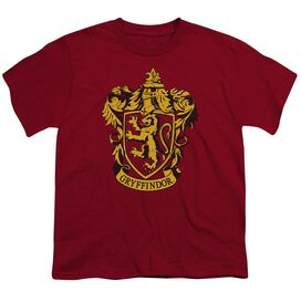 Harry Potter Gryffindor Crest Short Sleeve Youth T-Shirt