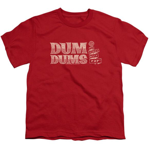 Dum Dums World's Best Short Sleeve Youth T-Shirt
