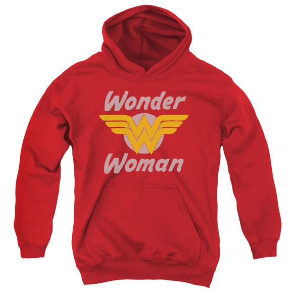 Dc Wonder Wings Youth Pull Over Hoodie