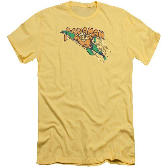 Dc Swim Through Short Sleeve Adult T-Shirt