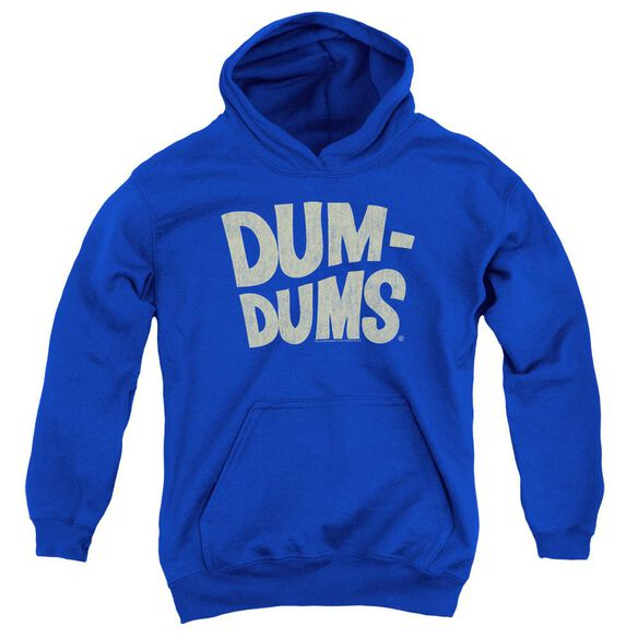 Dum Dums Distressed Logo Youth Pull Over Hoodie