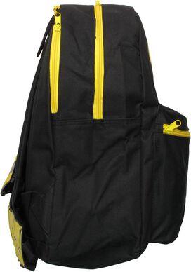Batman Hood Wings Backpack