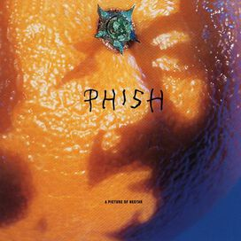 Phish - Picture of Nectar