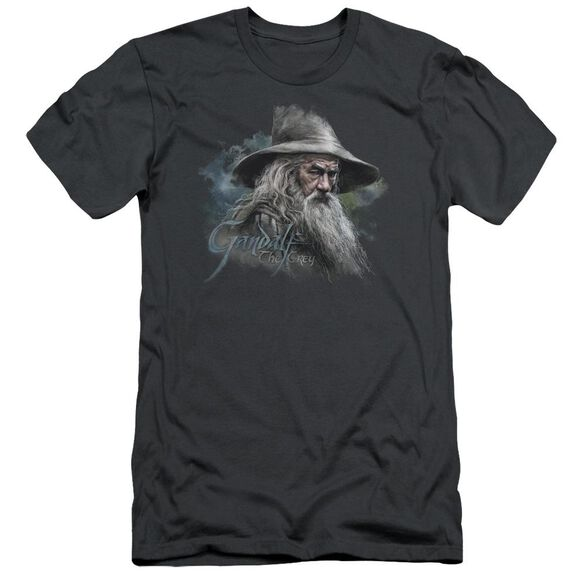 The Hobbit Gandalf The Grey Short Sleeve Adult T-Shirt