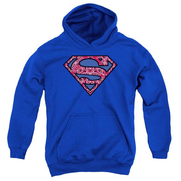 Superman Paisley Shield Youth Pull Over Hoodie