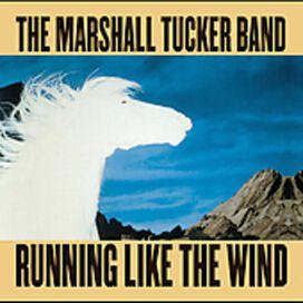 The Marshall Tucker Band - Running Like the Wind