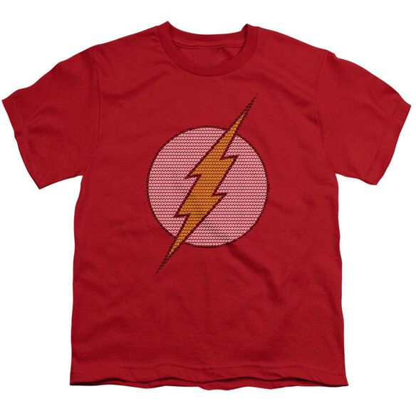 Dc Flash Little Logos Short Sleeve Youth T-Shirt