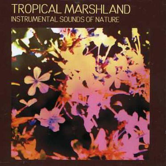 Tropical Marshland