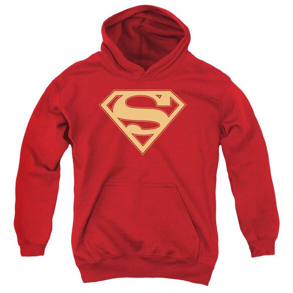 Superman & Gold Shield Youth Pull Over Hoodie