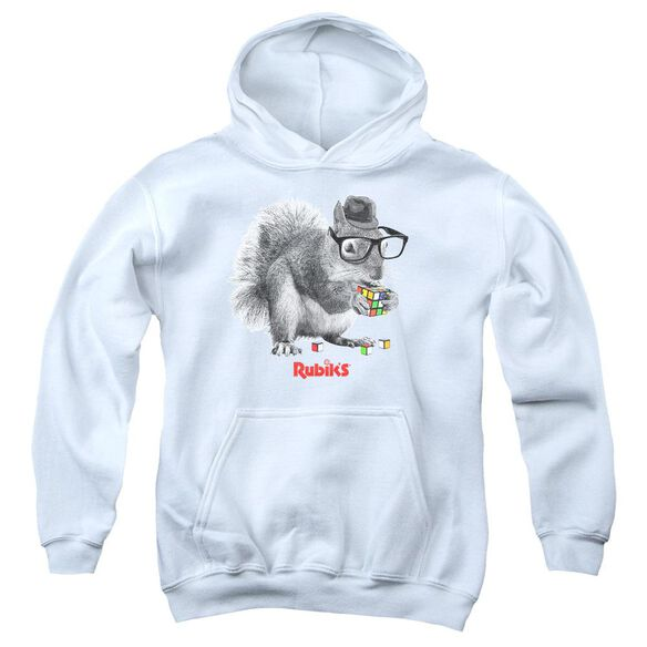 Rubik's Cube Nerd Squirrel Youth Pull Over Hoodie