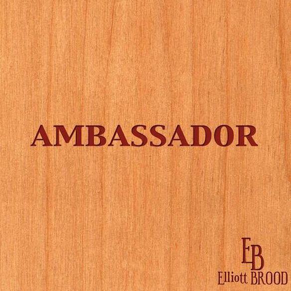 Ambassador 0207