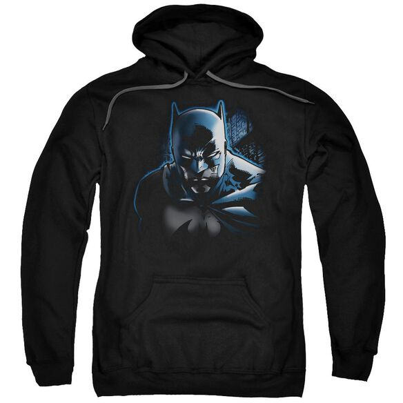 Batman Don'T Mess With The Bat Adult Pull Over Hoodie