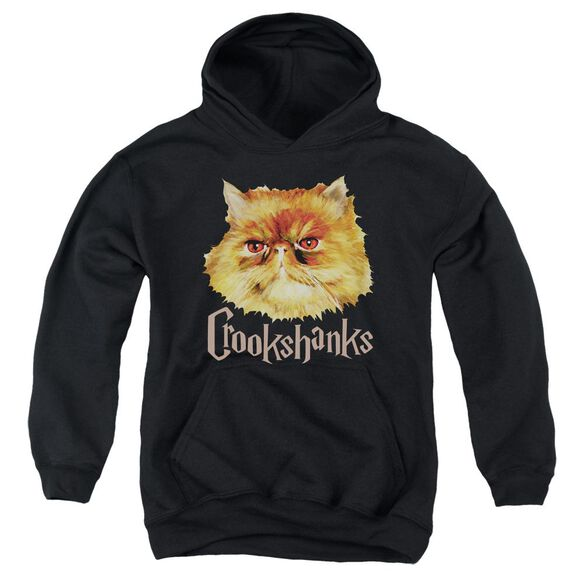 Harry Potter Crookshanks Color Youth Pull Over Hoodie