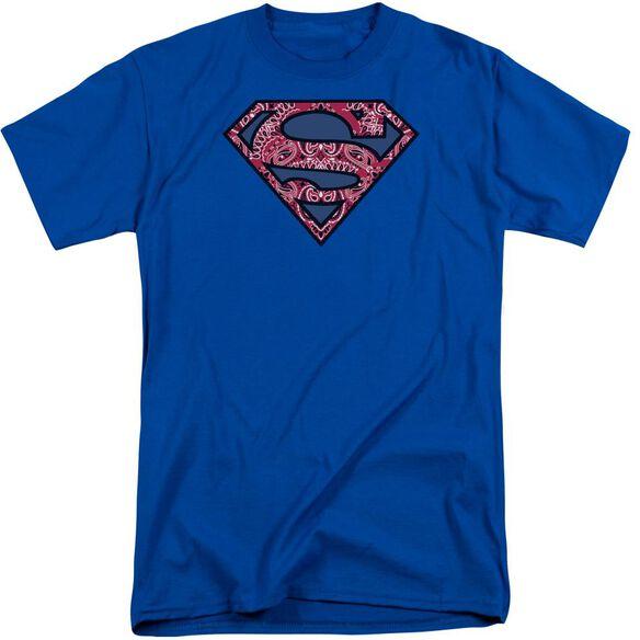 Superman Paisley Shield Short Sleeve Adult Tall Royal T-Shirt