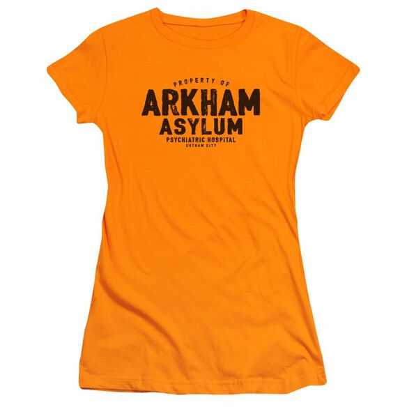 Batman Arkham Asylum Short Sleeve Junior Sheer T-Shirt
