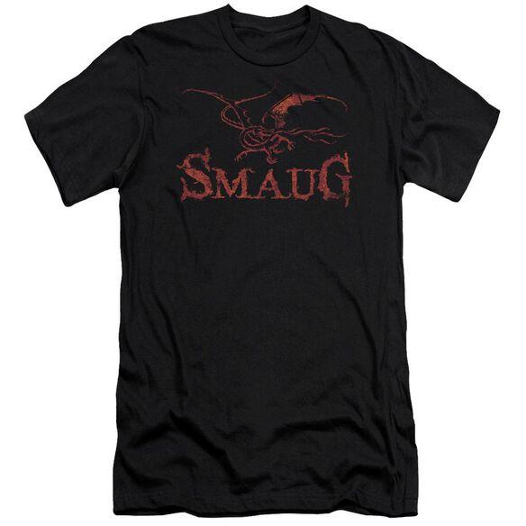 Hobbit Dragon Short Sleeve Adult T-Shirt