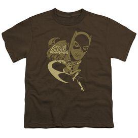 Dc Flying Batgirl Short Sleeve Youth T-Shirt