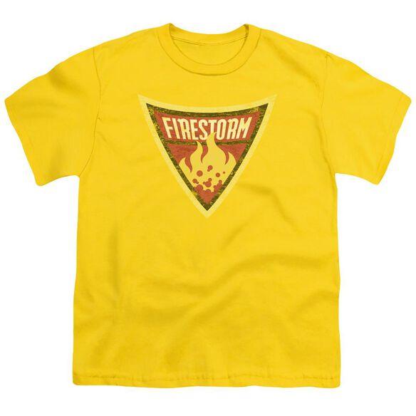 Batman Bb Firestorm Shield Short Sleeve Youth T-Shirt