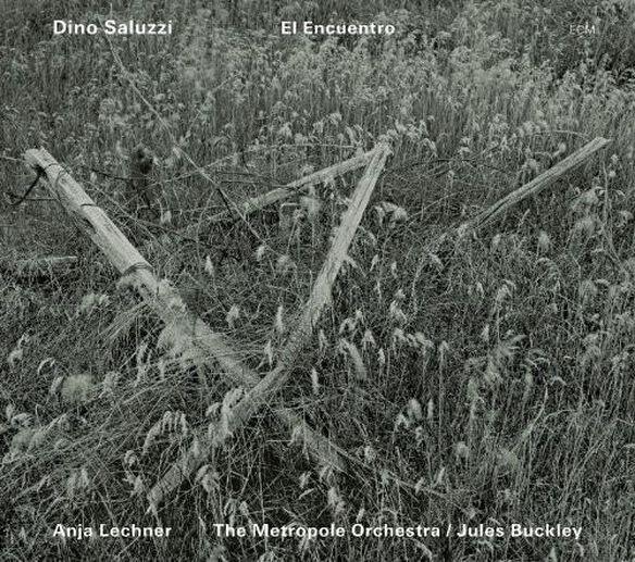 Dino Saluzzi & Anja Lechner - El Encuentro