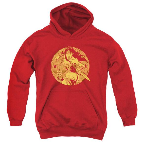 Jla Young Wonder Youth Pull Over Hoodie
