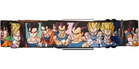 Dragon Ball Z Double Pose Wrap Seatbelt Belt