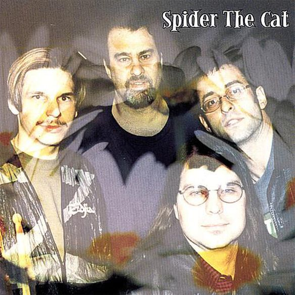Spider The Cat