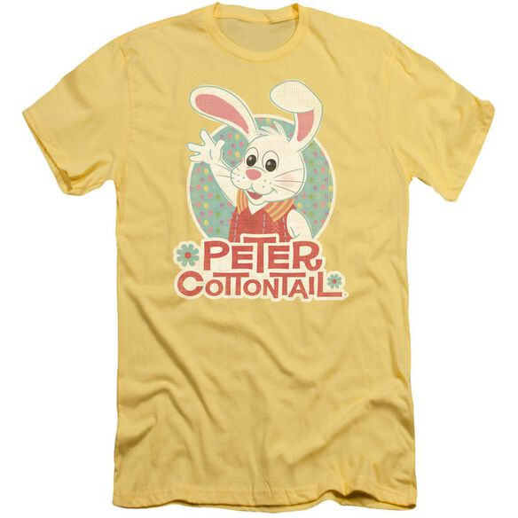 Here Comes Peter Cottontail Peter Wave Short Sleeve Adult T-Shirt