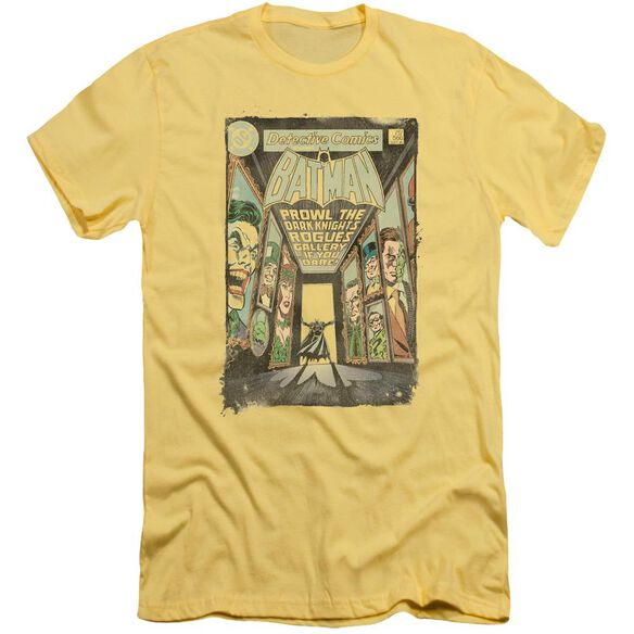 Batman Rogues Gallery Cover Short Sleeve Adult T-Shirt